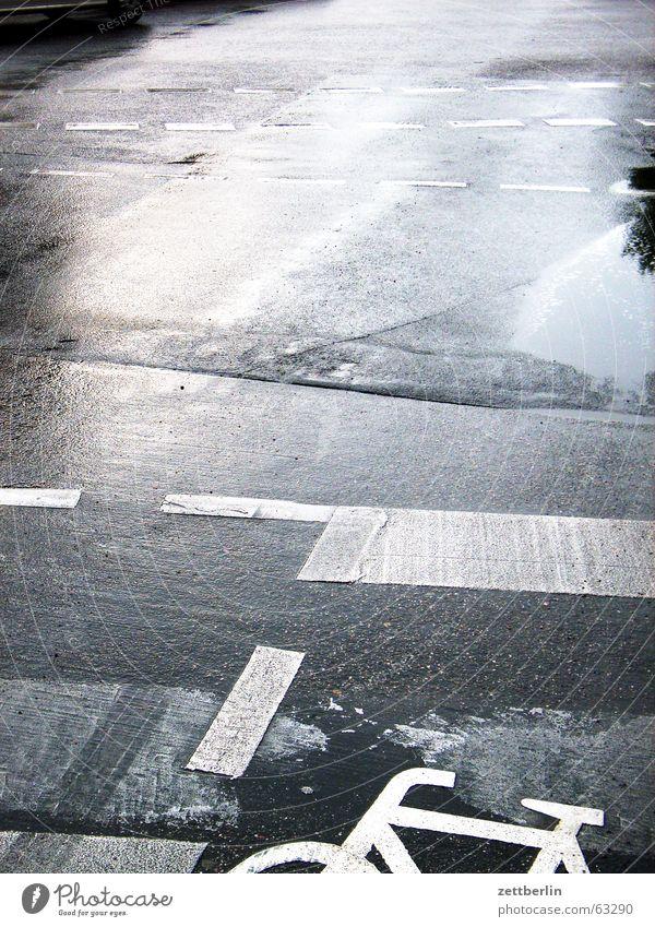 Heimweg Pfütze Fahrrad Fahrradweg Asphalt einzigartig Öffentlicher Personennahverkehr nass schlechtes Wetter Regen Straße Schilder & Markierungen Wasser