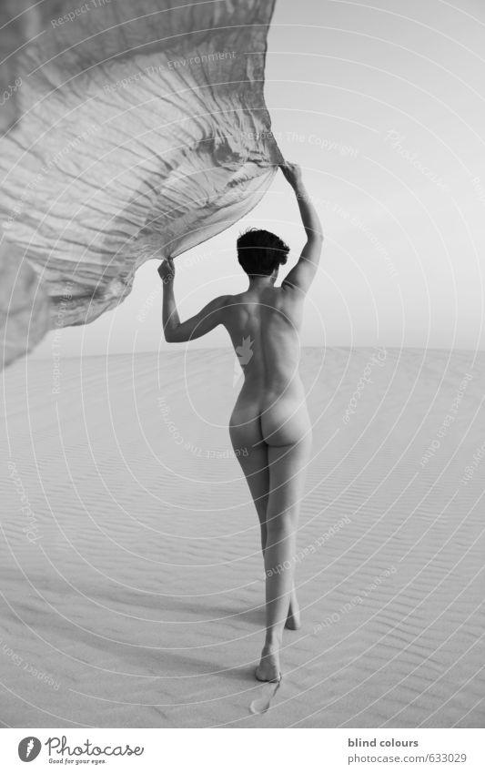 licence poétique Kunst ästhetisch Zufriedenheit Akt Erotik Frau Tuch wehen Himmel laufen Wüste Sand Düne Frauenkörper Frauenrücken Emanzipation Rücken Laufsport