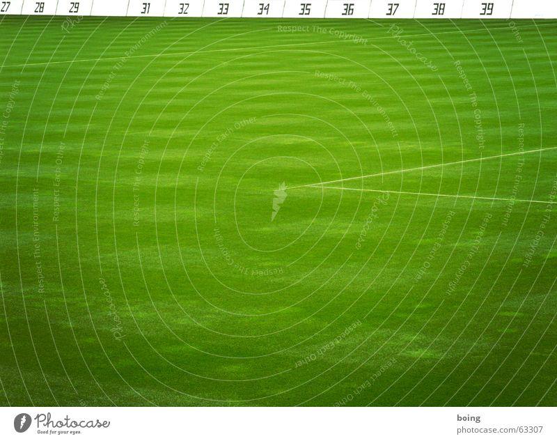 Trainingspause wegen Muskelverhärtung Platz Rasen Sportrasen Strafraum leer Fußballvereine Pokal Elfmeter Liga Ball Trainer Abstieg aufsteigen Ballsport