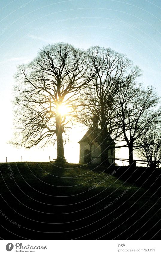 Weil es in Bayern so schön ist, noch eine Kapelle Himmel Baum Sonne blau Stimmung Religion & Glaube