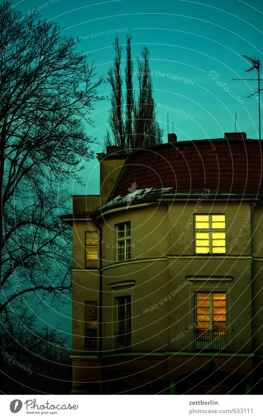 Käseglocke Berlin Stadt Vorstadt lankwitz Stadtleben Haus Gebäude Villa Wohnhaus Häusliches Leben Fassade Fenster Dach Himmel Baum Ast Park Winter Abend