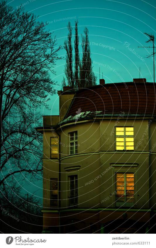 Käseglocke Himmel Stadt Baum Haus Winter dunkel Fenster Gebäude Berlin Park Fassade Stadtleben Häusliches Leben Dach Ast geheimnisvoll
