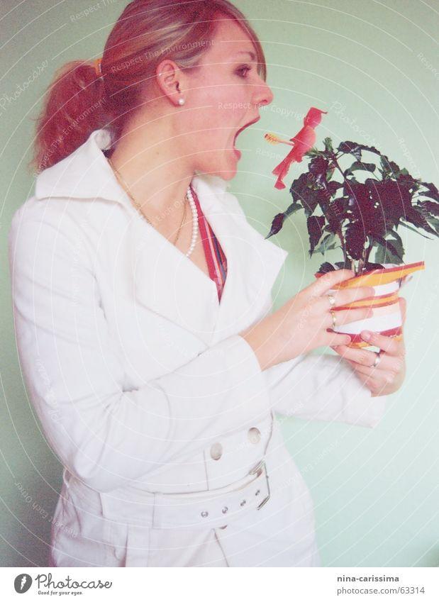 ..denn Tieren tun mir leid Frau weiß grün Blume Ernährung kalt Wand Mode lecker böse Mantel Zopf Vegetarische Ernährung Pferdeschwanz