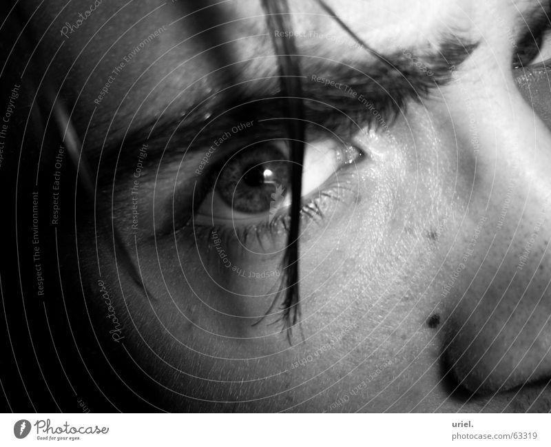 LidSchatten Pupille Wimpern Augenbraue eye haarstähne Haare & Frisuren Regenbogenhaut Schwarzweißfoto Blick Momentaufnahme