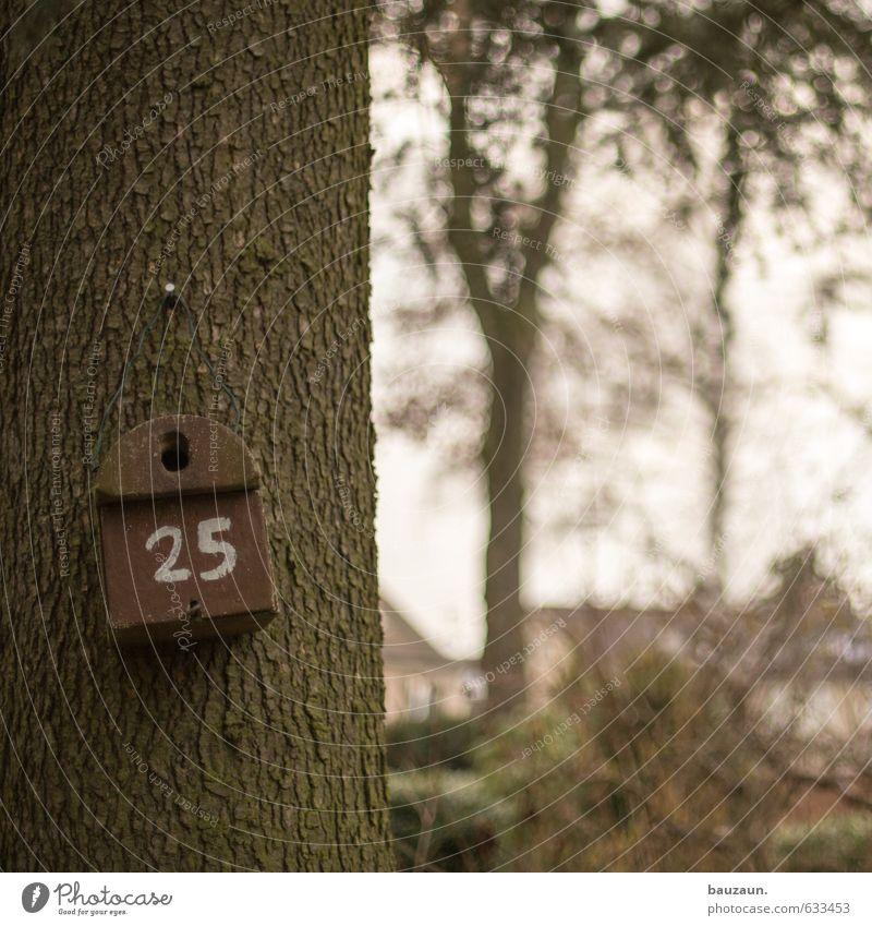 hausnummer 25. Ausflug Garten Gartenarbeit Himmel Pflanze Baum Sträucher Park Vogel Futterhäuschen Holz Ziffern & Zahlen beobachten Häusliches Leben braun Glück