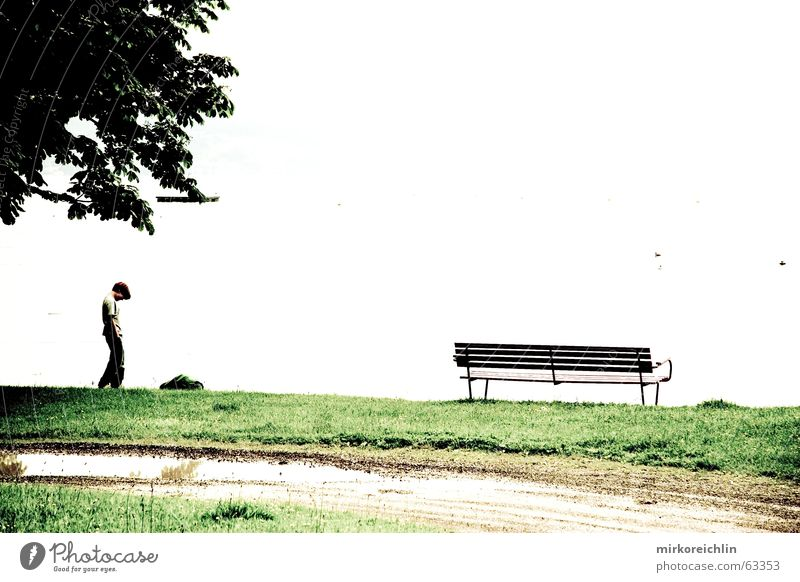In front of nothing Junge Baum See weiß leer Wiese Bank boy rien leblosigkeit tree lake Wege & Pfade