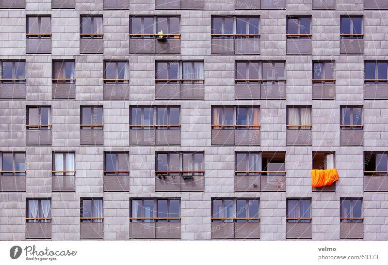 oranje bouwen Fenster orange Fassade anonym Raster Niederlande Amsterdam