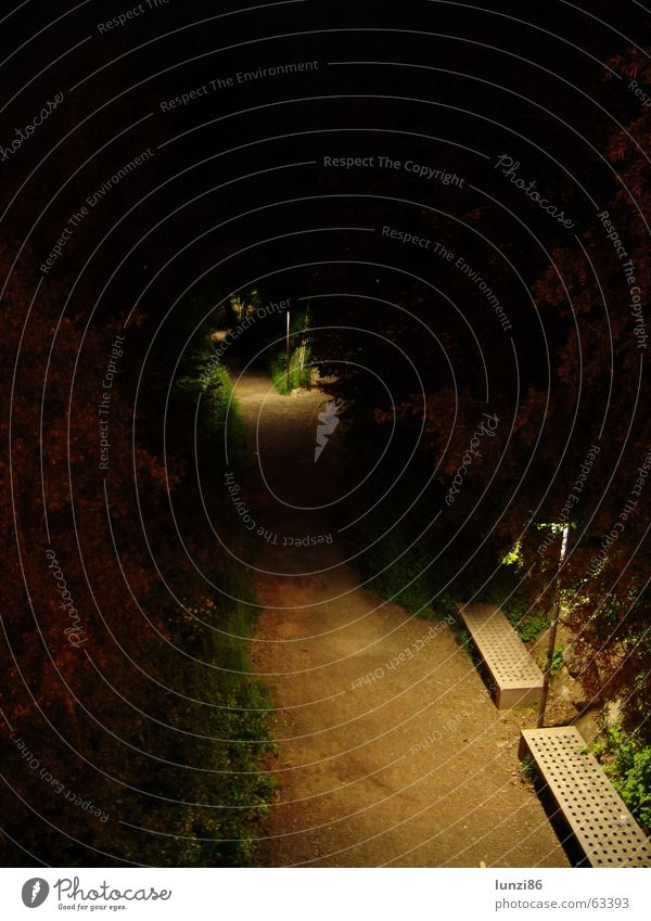 Nachtweg Natur grün Sommer ruhig Ferne dunkel Gras Wege & Pfade Park hell Angst Bank Laterne Verkehrswege Fußweg
