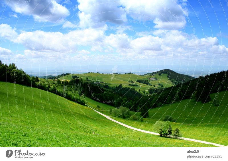 Schau ins Land Himmel grün Wolken Wald Berge u. Gebirge Wege & Pfade Landschaft Deutschland groß hoch Aussicht Technik & Technologie Idylle Hügel Schwarzwald Freiburg im Breisgau