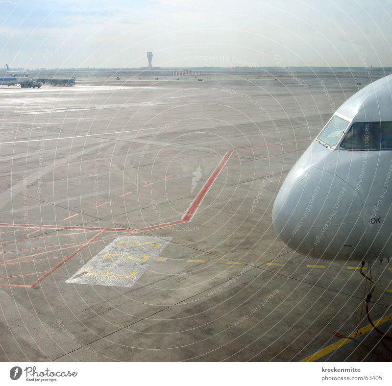 roll ins feld Ferien & Urlaub & Reisen Ferne Linie Flugzeug Horizont Beginn leer Flughafen Barcelona Abheben Gangway Rollfeld Cockpit Starterlaubnis