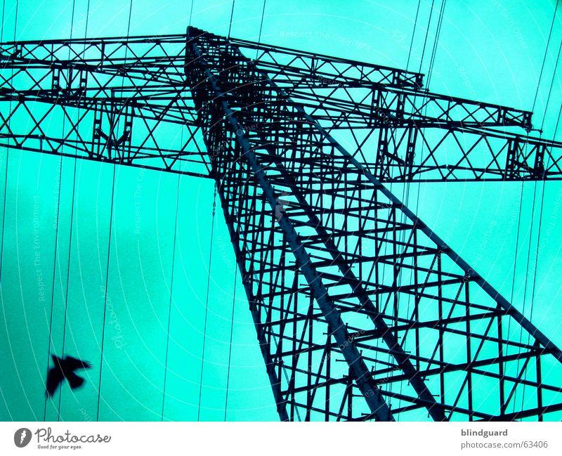 Lines In The Sky Himmel Wolken Vogel fliegen Energiewirtschaft Elektrizität Kabel Stahl 30 Strommast Konstruktion Antenne Leitung Hochspannungsleitung elektrisch Gier