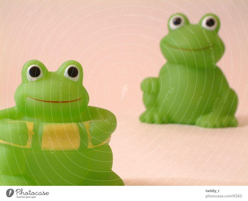 Frösche Spielzeug grün Frosch Detailaufnahme
