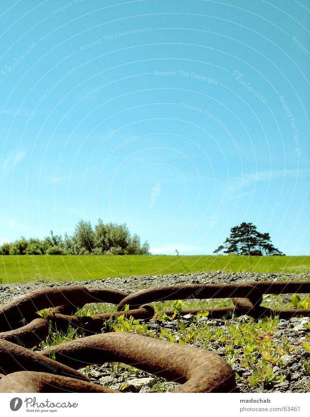 KITSCH ME INTO COLOR BABY   traumhaft bunt farben frei natur Natur schön Himmel Baum grün Sommer Freude Ferien & Urlaub & Reisen Wiese Gras Freiheit träumen