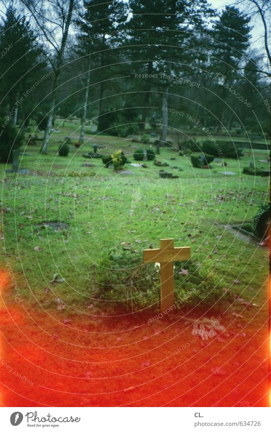 six feet under Natur Einsamkeit Traurigkeit Tod Religion & Glaube Angst Vergänglichkeit Unendlichkeit Trauer Todesangst Sehnsucht Ende Zukunftsangst gruselig
