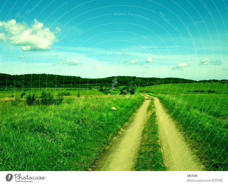 Weg Natur Himmel grün blau Ferien & Urlaub & Reisen Wolken Gras Wege & Pfade Landschaft Hoffnung paarweise Zukunft Rasen Ziel Unendlichkeit Flüssigkeit