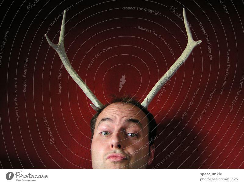 Jagdtrophäe (1) Mann weiß rot Gesicht verrückt skurril Horn Trophäe