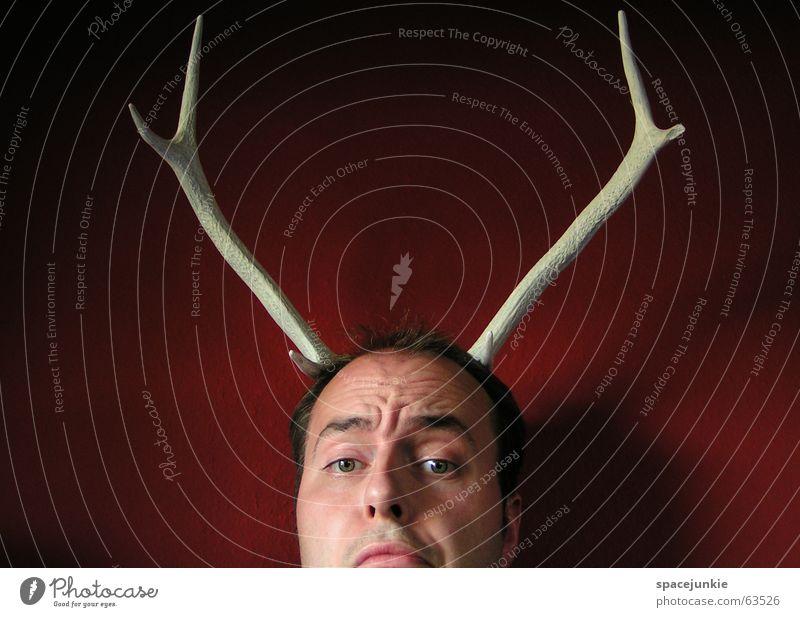 Jagdtrophäe (2) Mann weiß rot Gesicht verrückt skurril Horn Trophäe