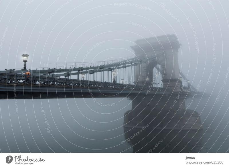 Früh Wasser Nebel Fluss Brücke Sehenswürdigkeit Kettenbrücke alt groß schön grau schwarz Straßenbeleuchtung Farbfoto Gedeckte Farben Außenaufnahme Tag