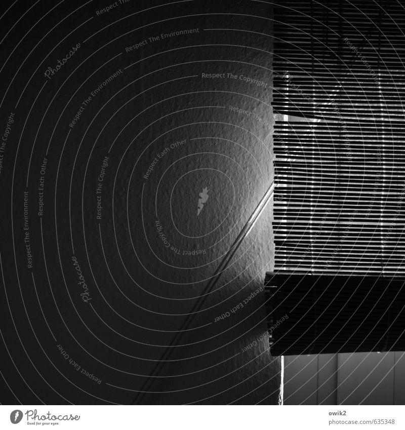 Tagein Mauer Wand Fenster Jalousie dunkel authentisch einfach Tapete Raufasertapete Fensterrahmen Seil quer diagonal Strukturtapete Schwarzweißfoto