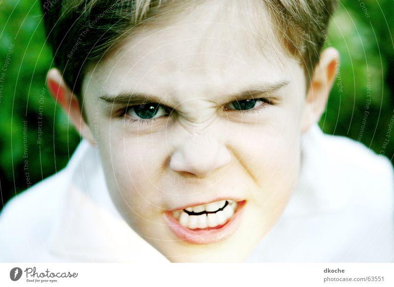 Lass meinen Bruder in Ruhe! Kind grün Junge Wut Gewalt schreien Kindererziehung Schulkind drohen