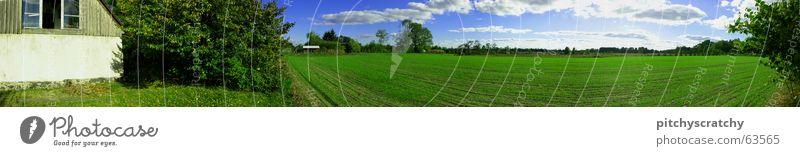 Dorf Gras Feld Sommer Panorama (Aussicht) Haus Wiese Wolken Landhaus Nest grün Grasland Viehweide Villa Himmel Dorfwiese mark-brandenburg Landschaft Amerika pan