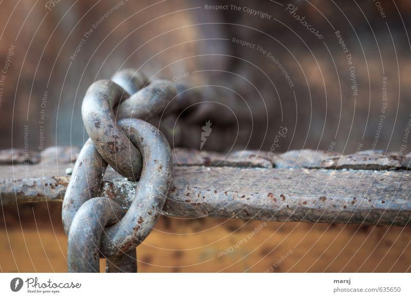 Keine Sorge, die hält garantiert! Baustelle Kette Kettenglied Metall Stahl Rost festhalten hängen authentisch kalt stark trist grau Kraft Vertrauen Sicherheit