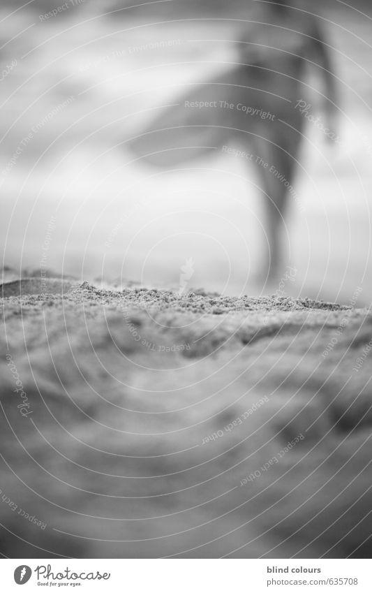 planchiste Frau Ferien & Urlaub & Reisen Strand Erotik Kunst Zufriedenheit ästhetisch Laufsport Stranddüne Surfen Surfer Surfbrett Urlaubsfoto Urlaubsort