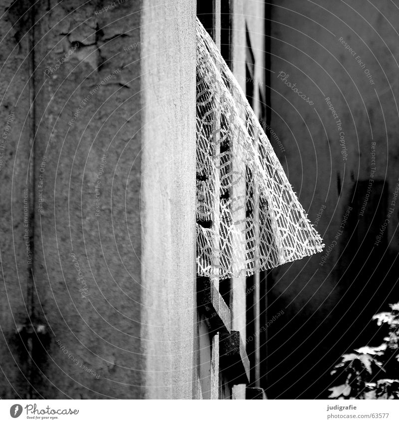 Heimtextilien alt weiß schwarz Haus Fenster grau Mauer Gebäude Wind Wohnung Beton kaputt trist Spitze Idylle Ruine
