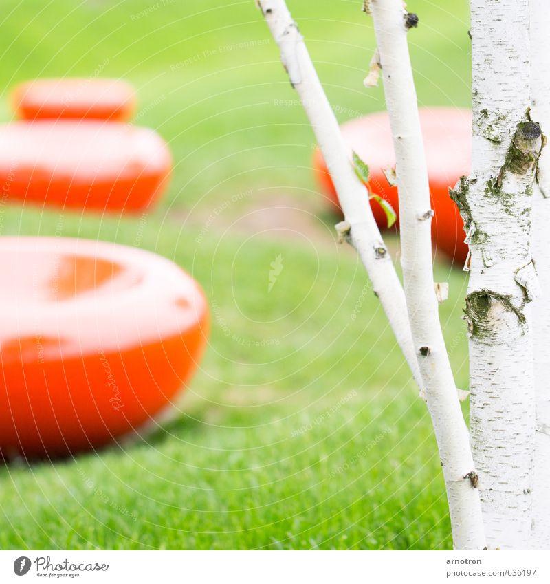 Blutkörperchen - IGS 2013 Natur grün weiß Sommer Baum Erholung rot ruhig Wiese Freiheit Park elegant Zufriedenheit sitzen Lebensfreude Gelassenheit