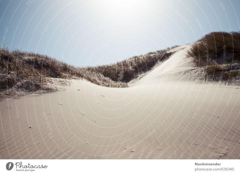 Dünen Ferien & Urlaub & Reisen Sommer Sonne Strand Meer Natur Landschaft Sand Wolkenloser Himmel Schönes Wetter Gras Küste Nordsee Wärme Fernweh Dünengras
