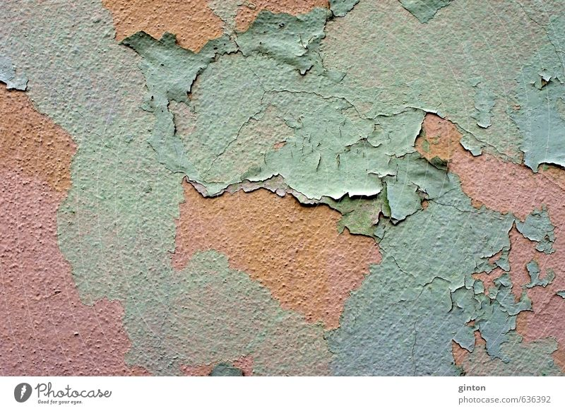 Abblätternde Farbe Haus Bauwerk Gebäude Architektur Mauer Wand Fassade Stein alt fest nah trashig braun grün Gedeckte Farben Außenaufnahme Detailaufnahme