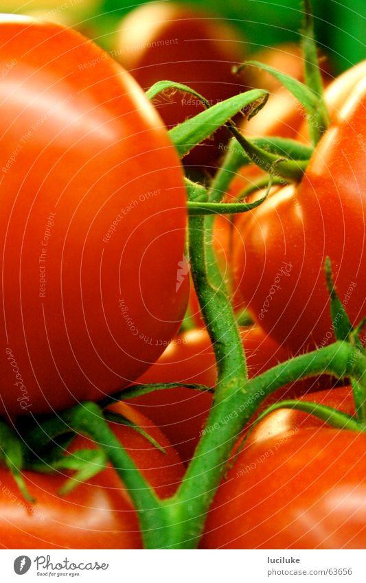 Wachsen Tomaten eigentlich am Baum? Lebensmittel rote rispentomaten am stiel Gemüse innenaufnahme ohne blitz