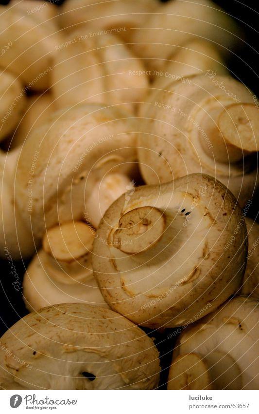 Champignons Lebensmittel Pilz Champignons