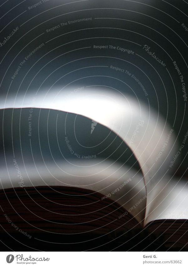 bitte umblättern Textfreiraum oben lesen Buch Wind Schriftzeichen Kommunizieren dunkel Verlag Buchstaben Tagebuch leer Belletristik Literatur aufschlagen