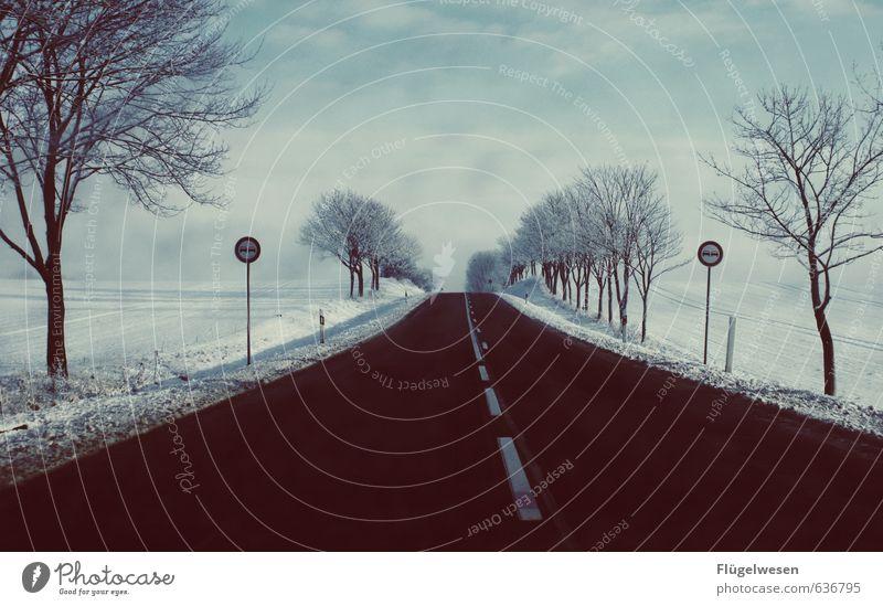 Endzeit Natur Einsamkeit Winter Umwelt Straße Schnee Schneefall Eis Wetter Nebel Schilder & Markierungen Wind Klima Frost Unwetter Sturm