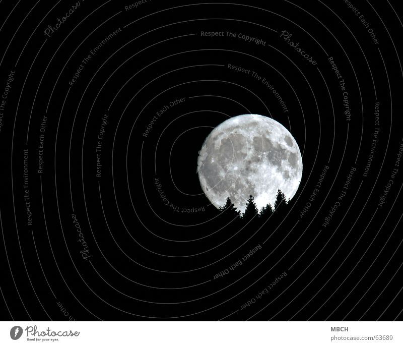 Mond 1 Baum hell Beleuchtung Tanne untergehen Vulkankrater