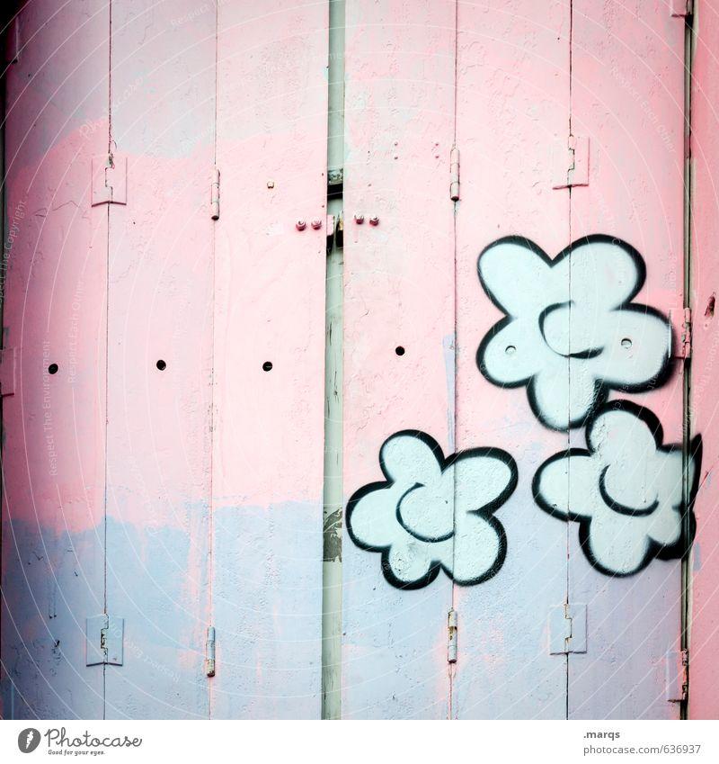 Geschlossen schön Farbe Blume Fenster Graffiti Stil Holz hell rosa Lifestyle Design geschlossen Kreativität violett trendy Fensterladen