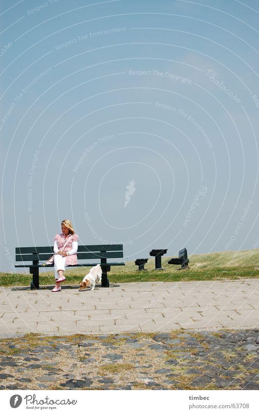 Strandgang Frau Himmel Meer grün blau Strand Tier Erholung Wiese feminin Haare & Frisuren Hund Stein Wege & Pfade blond Hintergrundbild