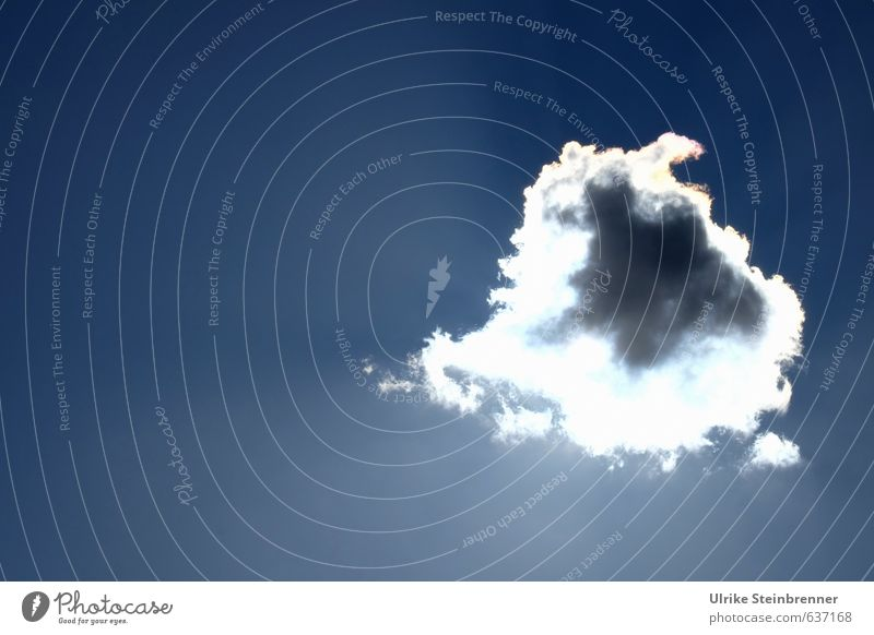 Lichtstrahlen | Bin nur kurz weg Himmel Natur blau weiß Sonne Wolken Winter Ferne Wärme grau oben natürlich hell Luft glänzend leuchten