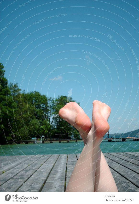 lass uns wellenreiten gehn.. See Steg Wolken Baum Wald Gewässer Holz gemütlich Physik Sommer Fuß Wasser Himmel Holzbrett Wärme Haut Beine