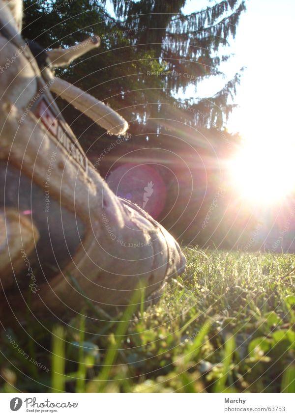 The Dawn Of Shoe Baum Wiese Schuhe Rasen