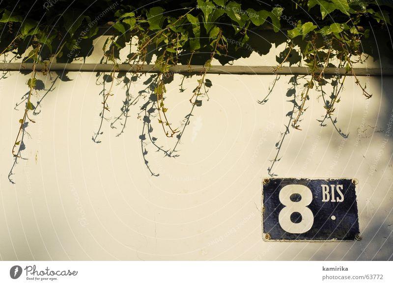 8BIS Straßennamenschild Efeu Pflanze Wand Mauer Abendsonne Sonnenuntergang Paris street eight Schilder & Markierungen Schatten mediteran