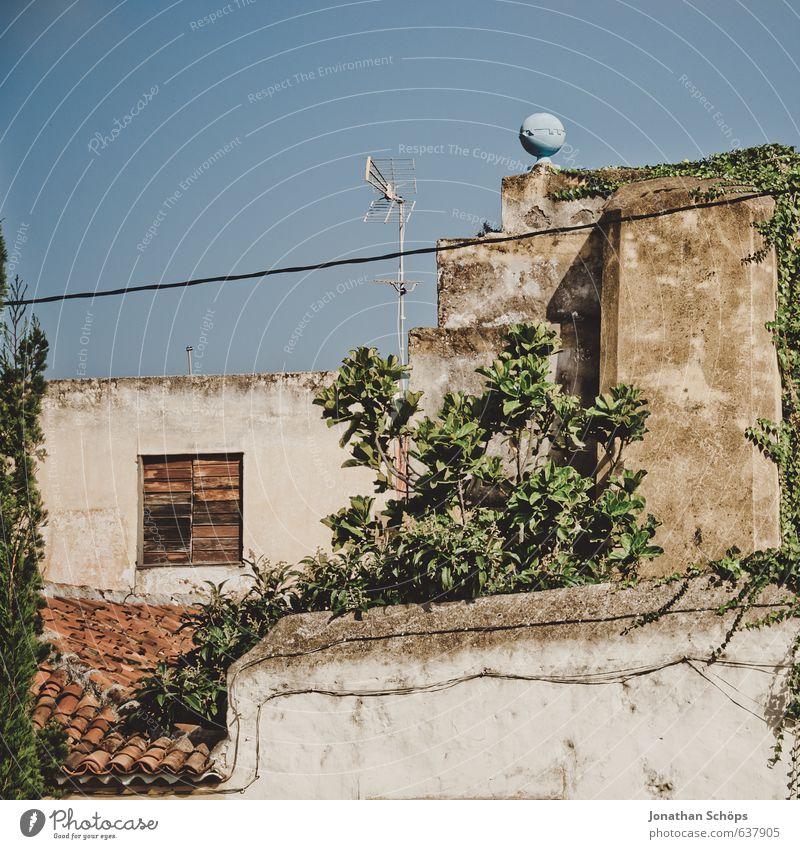 La Orotava / Teneriffa I blau alt grün Pflanze Sommer Haus Fenster Wand Gebäude Architektur Mauer klein braun Fassade Häusliches Leben Dach
