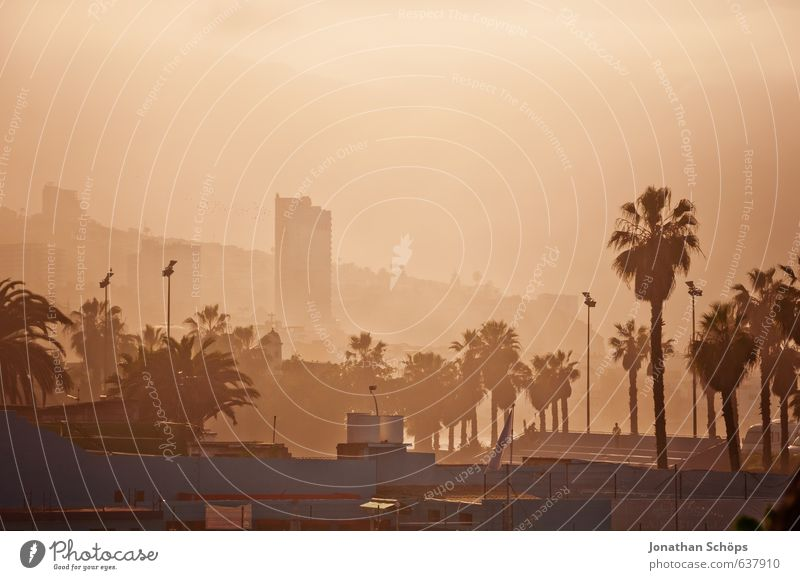 *** 700 *** Puerto de la Cruz / Teneriffa Kanaren Spanien Süden Stadt Hafenstadt Stadtzentrum Skyline Hochhaus heiß orange Tourismus Dunst Nebel Nebelschleier