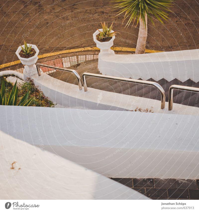 Puerto de la Cruz / Teneriffa III Ferien & Urlaub & Reisen Stadt grün weiß Pflanze Wärme Wand Mauer hell braun Treppe Tourismus Aussicht Spanien Treppengeländer