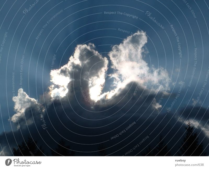 2 Pferde!? Sonne Wolken