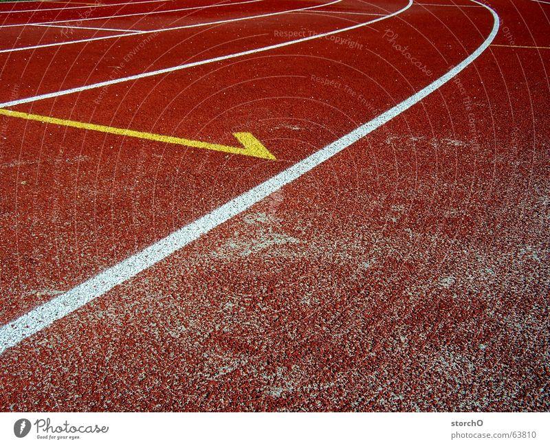 Erster Thüringen Gotha rot weiß Top 100 Meter Lauf Staffellauf Weitsprung Sportfest Sommer gelb frei laufen Eisenbahn Kurve