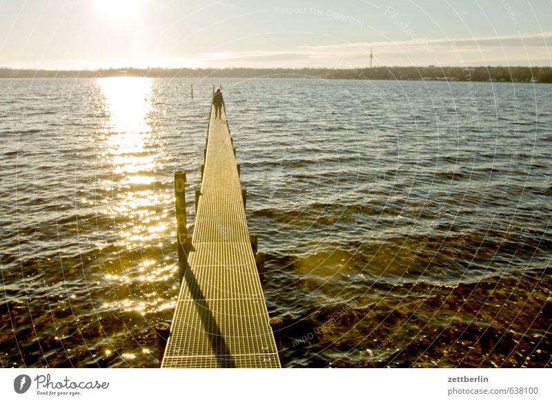 Steg am Wannsee See Wasser Gewässer Sonne Gegenlicht Küste Seeufer Flussufer Anlegestelle grell blenden hell Licht Sonnenlicht Sonnenuntergang Wellen Binnensee