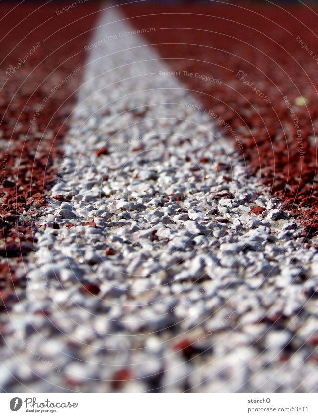 Wo muss ich laufen? weiß rot Sommer Sport laufen frei Eisenbahn Leichtathletik Top Kurve Thüringen Staffellauf 100 Meter Lauf Weitsprung Gotha Sportfest