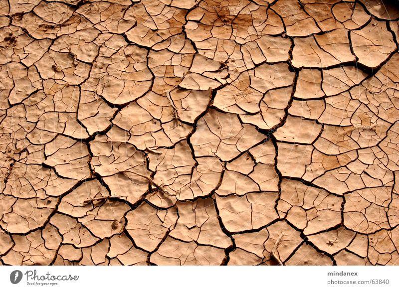 risse & furchen Lehm Dürre beige Holz Feld Wüste Bodenbelag Riss Furche
